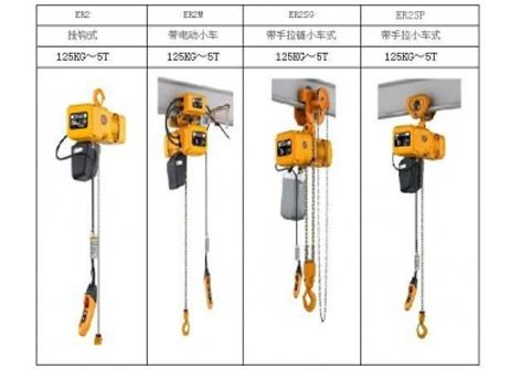 上海环链电动葫芦 固定电动葫芦  链条电动葫芦厂家批发