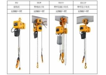 厂家直销保用一年 环链电动葫芦 250公斤 300公斤 500公斤 1吨